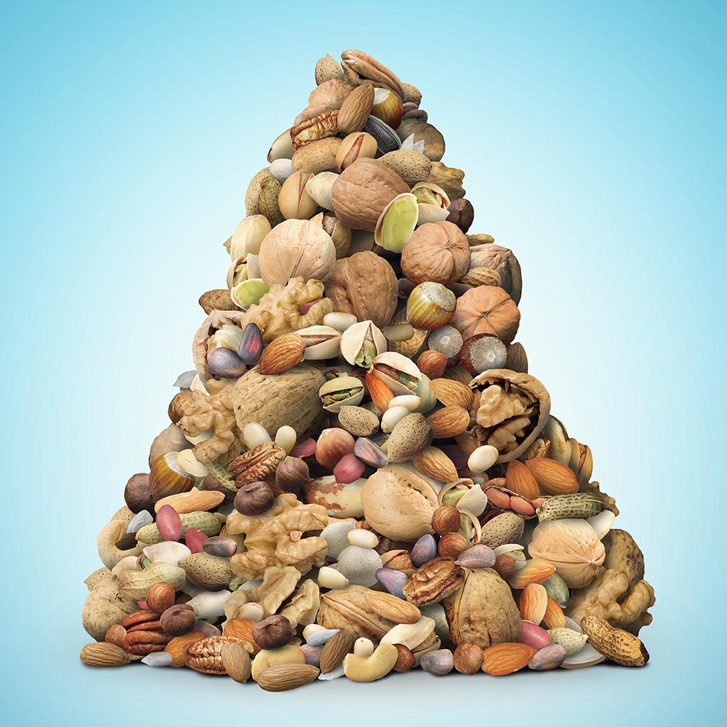 Algae Omega 3 – better than Nuts & Seeds?
